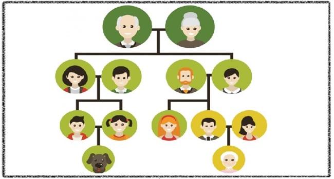 آموزش انگلیسی: شما و خانواده