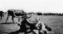 داستان کوتاه انگلیسی: Ernest Hemingway - Indian Camp